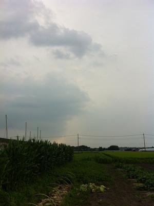 Img_0858_r